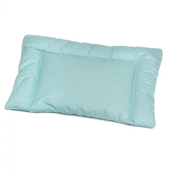 Детская подушка Эко-Комфорт до 2 лет, размер 40х60 смДля беременных и новорожденных<br>Вес наполнителя: 0,15 кг <br>Чехол: Стеганый, с кантом<br><br>Тип: Подушка<br>Размер: 40х60<br>Материал: 100% пух